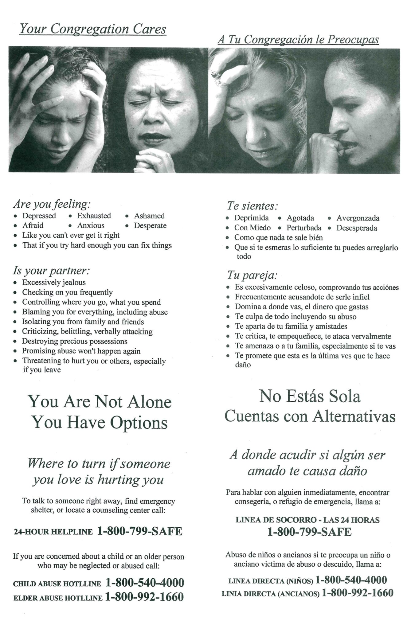 Signs of Abuse Flyer PDF