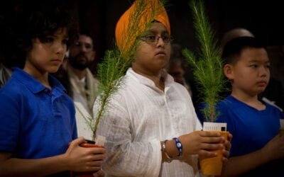 Sikhism and the Environment