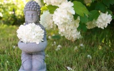 A Buddhist Understanding of Nature