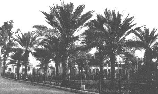 Ridvan Garden, Baghdad. Unknown, Public domain, via Wikimedia Commons